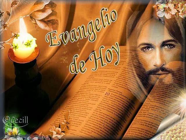 EVANGELIO DOMINGO (13-7-2014)