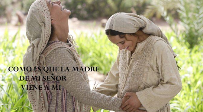 Domingo de la vigésima semana de Tiempo Ordinario. Asunción de la Bienaventurada Virgen María.